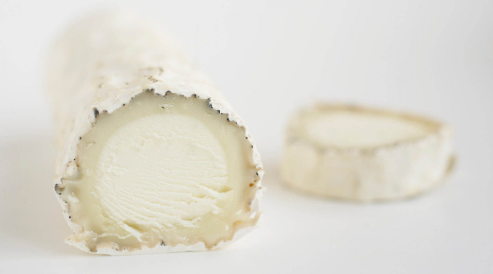 white goat cheese rounds